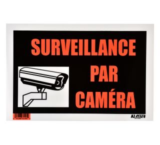 Product Name: SURVEIL PAR CAMERA