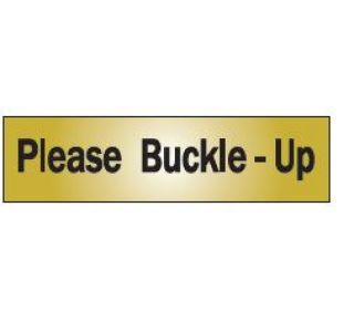 Product Name: PLS BUCKLE-UP