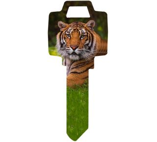 Product Name: TIGER PRINT